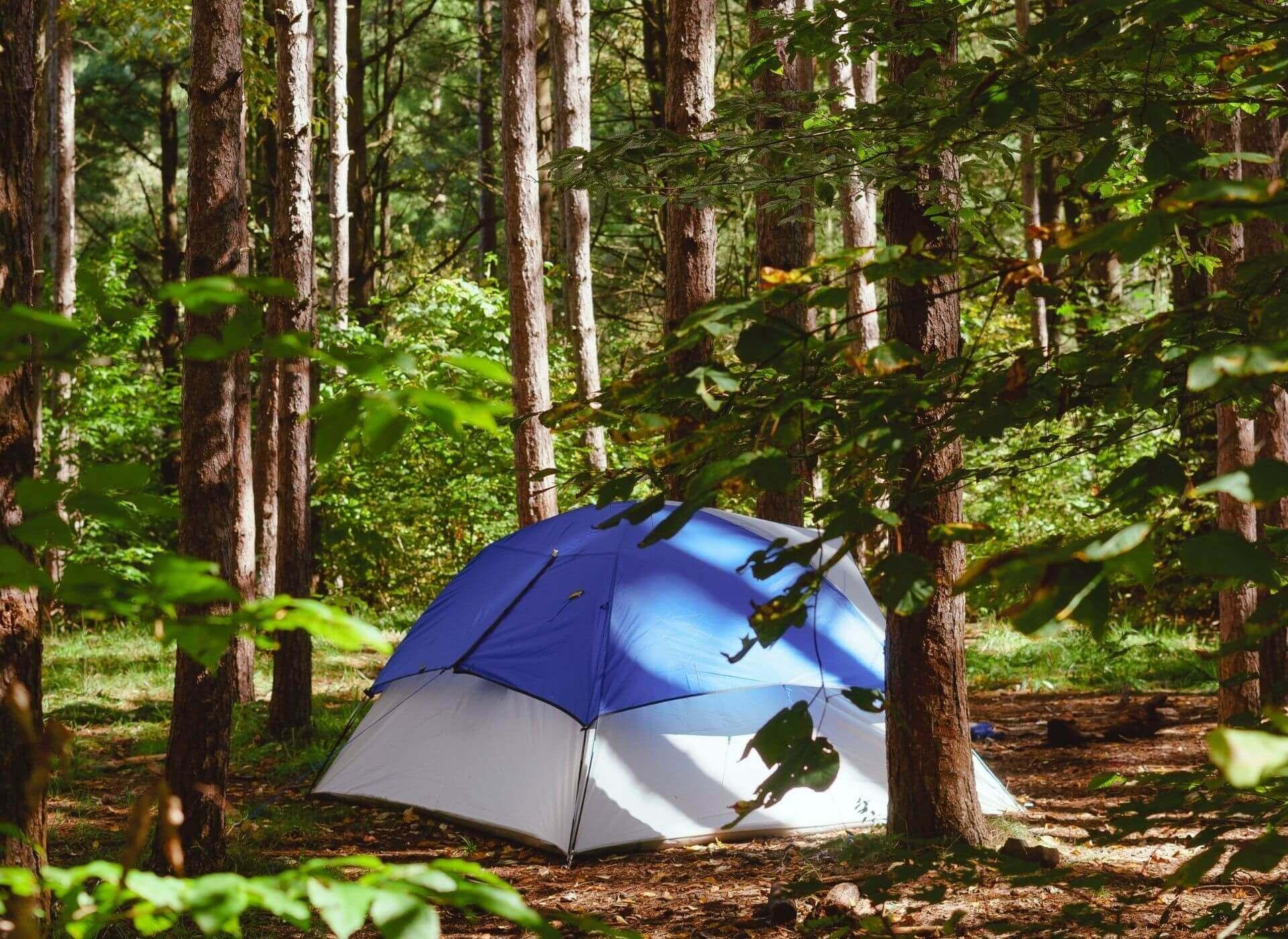 Fri teltning Danmark